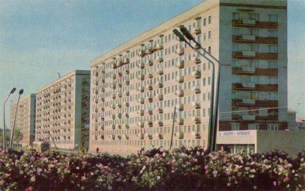 Жилые дома на улице Серова. Омск, 1971 год