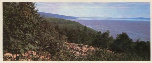 The lower reaches of the Amur. At Cape Chnyrrah, 1975