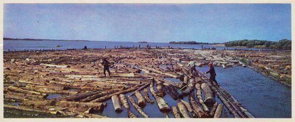 A bunch of rafts. Nanai District, 1975