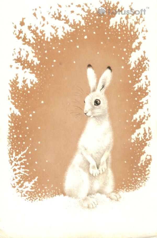 Hare, 1978