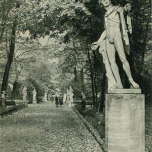 Главная аллея Летнего сада, 1969 год