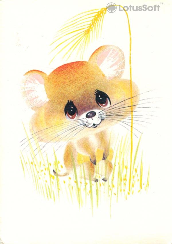 Hamster, 1989