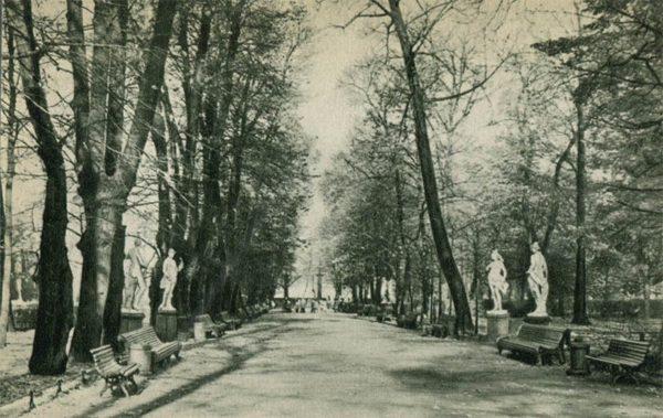 Аллея Летнего сада по направлению к Неве, 1969 год