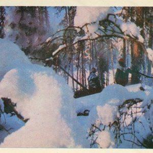 Зима на БАМе, 1977 год