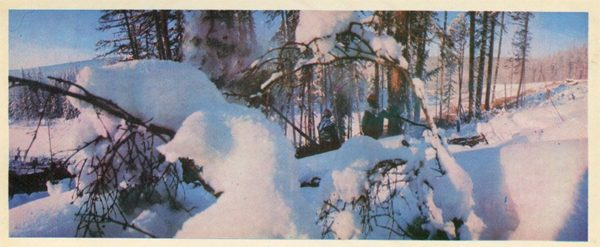 Winter at BAM, 1977