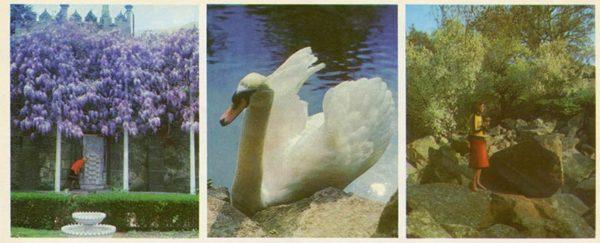 Фонтан слез. Алупкинский дворец-музей. Крым, 1983 год