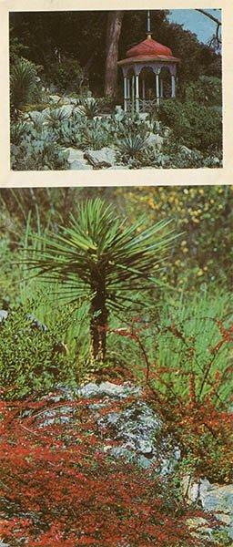 Gazebo in the Lower Park. Nikita Botanical Garden, 1986