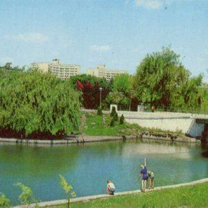 Arboretum to them. Lenin. Odessa, 1981
