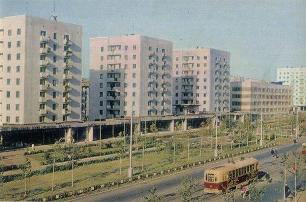 Revolutionary Street. Ufa, 1970