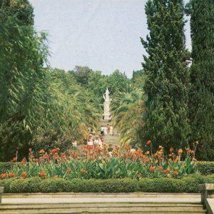 Arboretum. Sochi, 1986