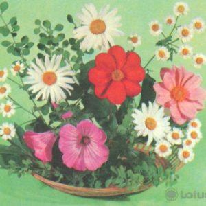 Kompoziitsiya of flowers, 1979