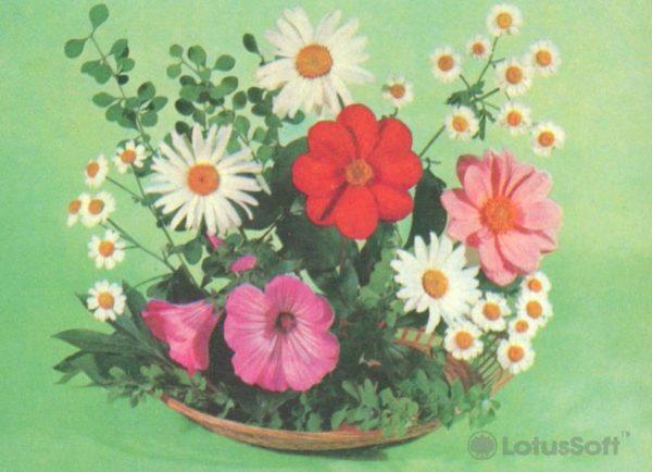 Композииция из цветов, 1979 год