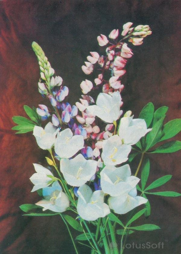Kompoziitsiya of flowers, 1985