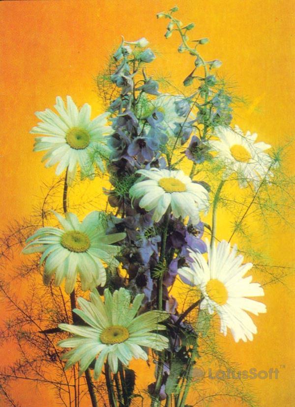 Композииция из цветов, 1983 год