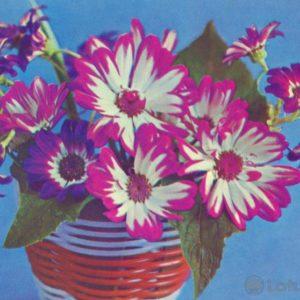Композииция из цветов, 1973 год