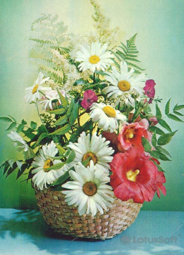 Композииция из цветов, 1985 год