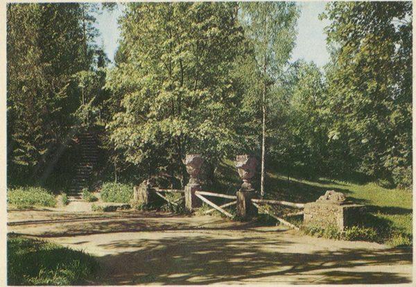 Рунный каскад, Павловский парк, 1970 год