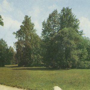 Parade field Pavlovsk Park, 1970