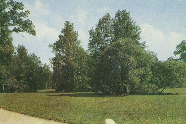 Парадное поле, Павловский парк, 1970 год