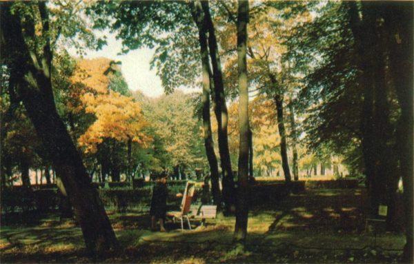 Summer Garden, Fall, 1971
