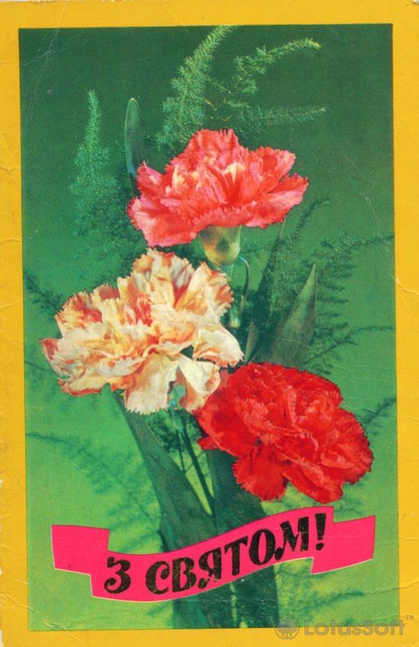W holy, 1982