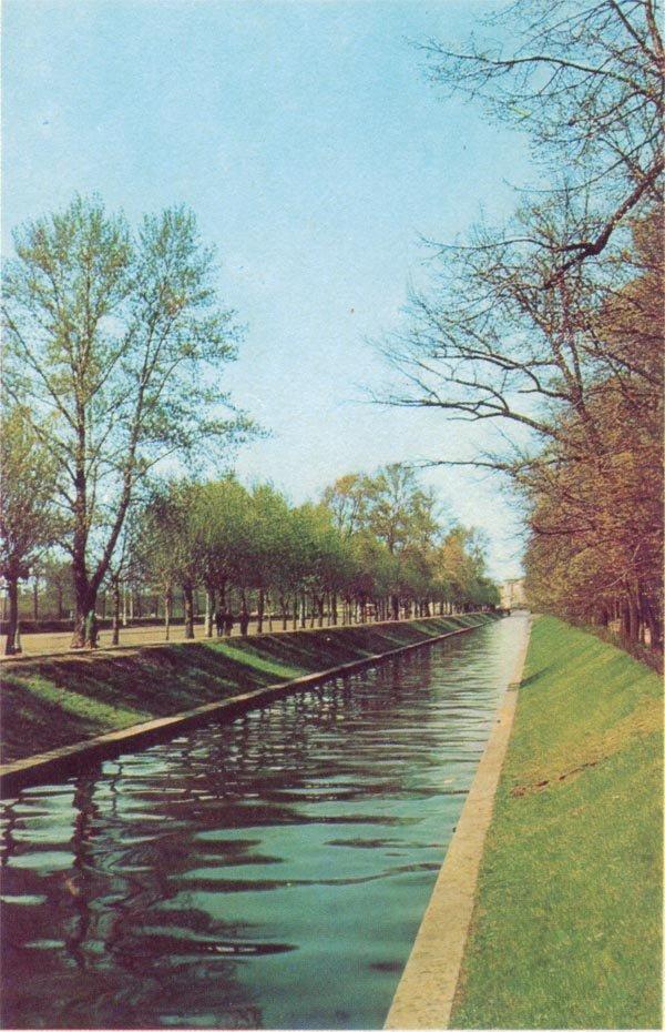 Лебяжий канал, 1971 год