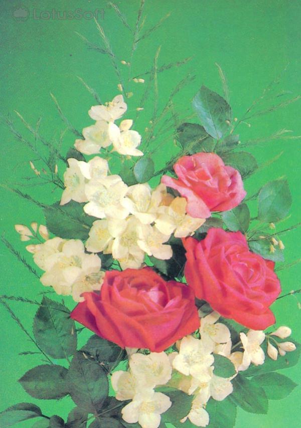 Kompoziitsiya of flowers, 1987