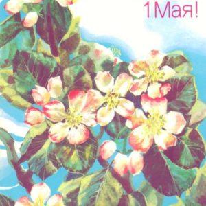 Happy May 1, 1988