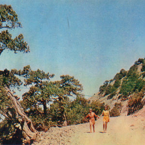 Valley Sukkah. The road to the spring, Anapa, 1973
