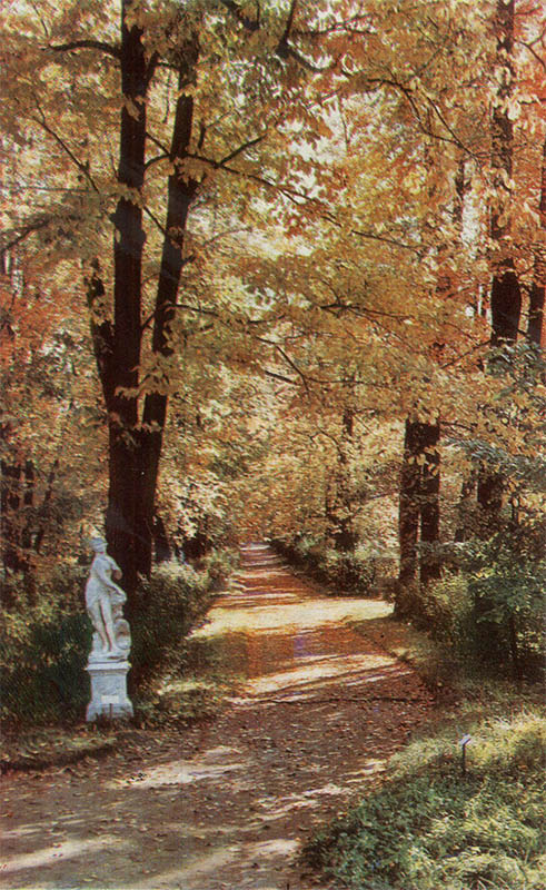Alley in the Catherine Park, Pushkin, 1969
