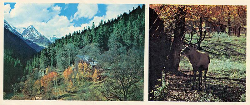 Gorge Alibek, Dombay, 1983